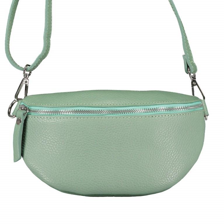 Gürteltasche Dollaro Hellgrün, Farbe: grün/oliv, Marke: Hausfelder, EAN: 4065646003385, Bild 1 von 9