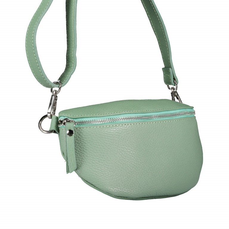 Gürteltasche Dollaro Hellgrün, Farbe: grün/oliv, Marke: Hausfelder, EAN: 4065646003385, Bild 2 von 9