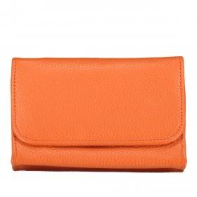 Hausfelder Kosmetik-Etui AP5 Orange